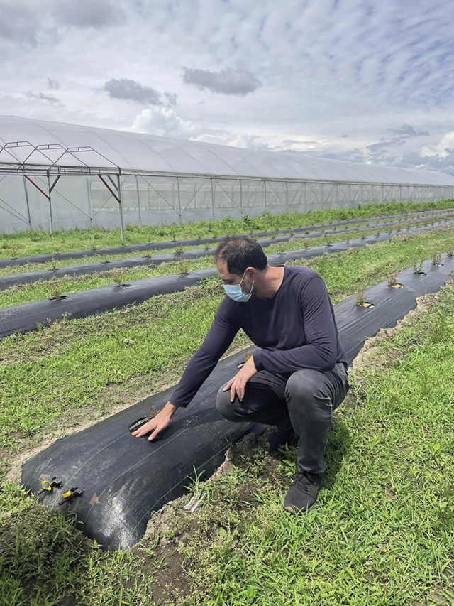 Giorgi Zakaraia says that launching the blueberry plantation was a risk at the time due to lack of relevant practice in the country, but the move led to success