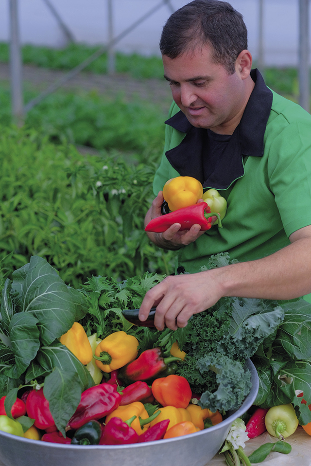 Kakha Tutberidze: You can be confident in the quality of your products and know that vegetables grown to these standards will compete with the products of countries with many years of agrarian tradition